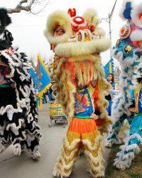 Tet Yeni Yıl Festivali