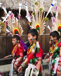 Hornbill Festivali