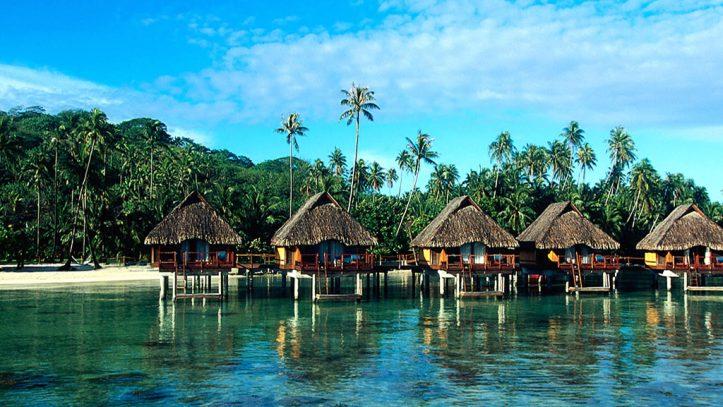 Kanarya Adaları