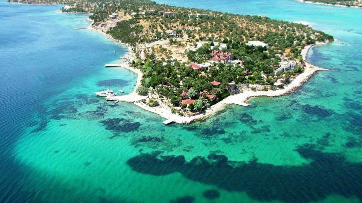 Sardunya Adası