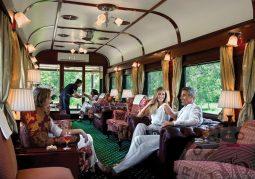 Lüks Tren İle Güney Afrika Safari