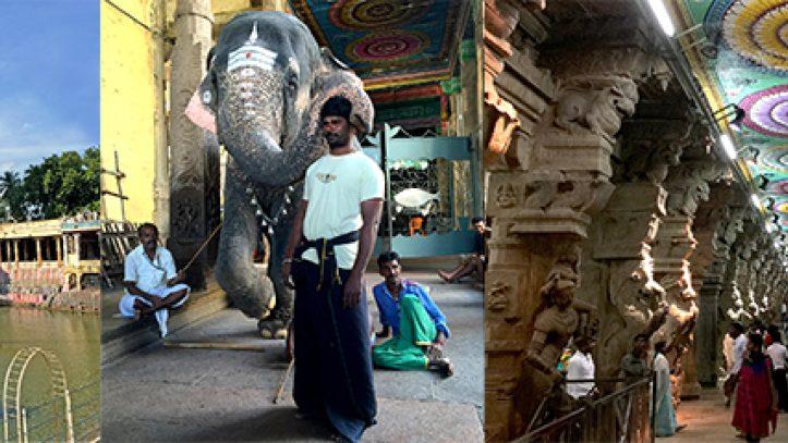 Güney Hindistanda Renklerin Dansı