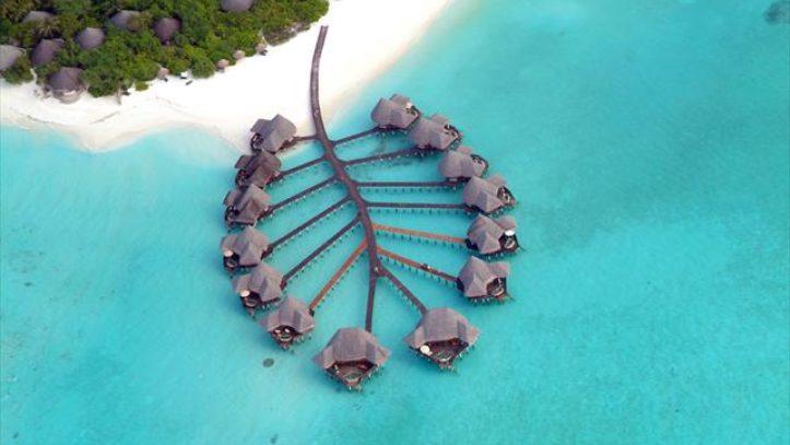 Maldivlerde Balayı ve Tatil