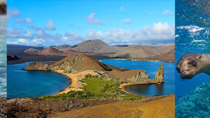 Ekvador Galapagos Adaları